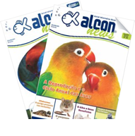 informativos alcon news