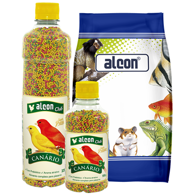 alcon club canário