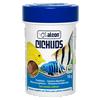 alcon cichlids